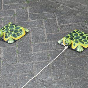 Schildpadrace
