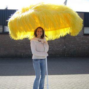 raffia_parasol